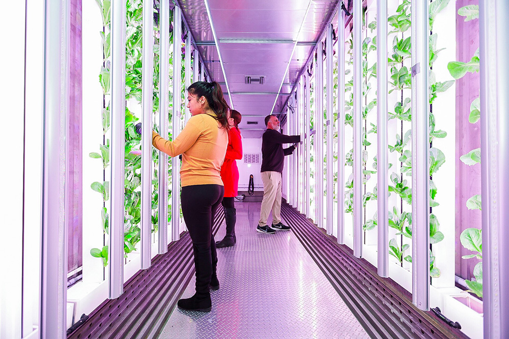 Contact Grow Pod Solutions