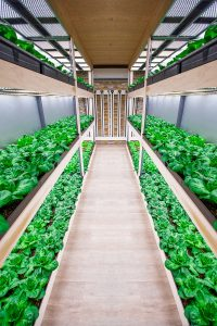 Automatic Vertical Farming Systems with Controlled Climate Technology