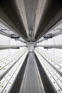 Vertical Farm System with Automatic Control Technology