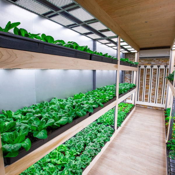 Container Farms New Type of Agriculture - Grow Pod Solutions
