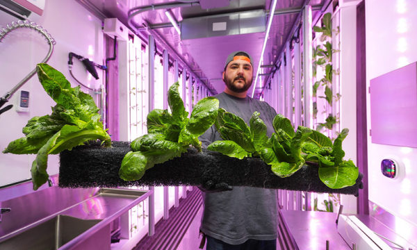 Hydroponics Container Farm Holding Strip