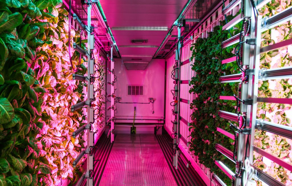 Vertical Farming in Shipping Containers