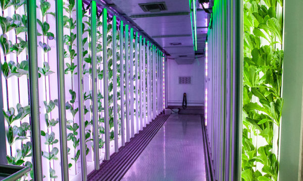 Vertical Farming Systems and Container Farms