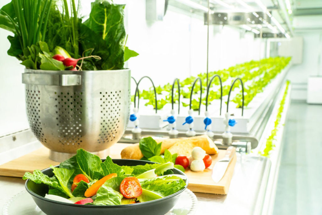 Future of Food Security Through Indoor and Vertical Farms