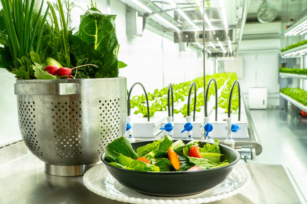 Solution to World Food Crisis Through Vertical Farming System