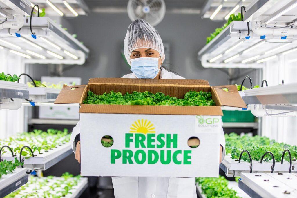 GP Solutions Donates Lettuce to Catrinas Club